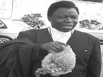 Olu Onagoruwa, Former Attorney-General and Minister of Justice ...