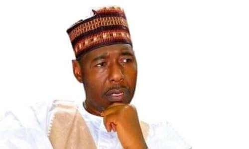 Gov. Babagana Umaru of Borno State. Photo: Daily Post