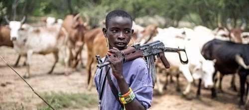 Addressing The Root And Solution Of Fulani Herdsmen: Destroying Our