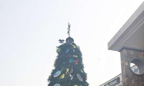 Ninja Turtle Christmas Tree.Nickelodeon Brings Teenage Mutant Ninja Turtles To Nigeria
